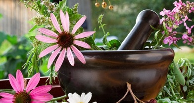 Nihon kategorija proizvoda biljne vrste